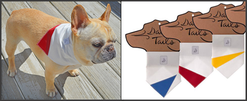 Retired Sail Cloth Bandanas